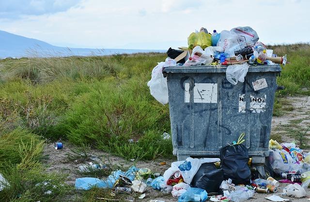 Cuidar el medio ambiente, ¿por qué nos cuesta tanto?